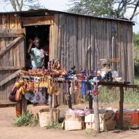 Где приобрести африканские барабаны